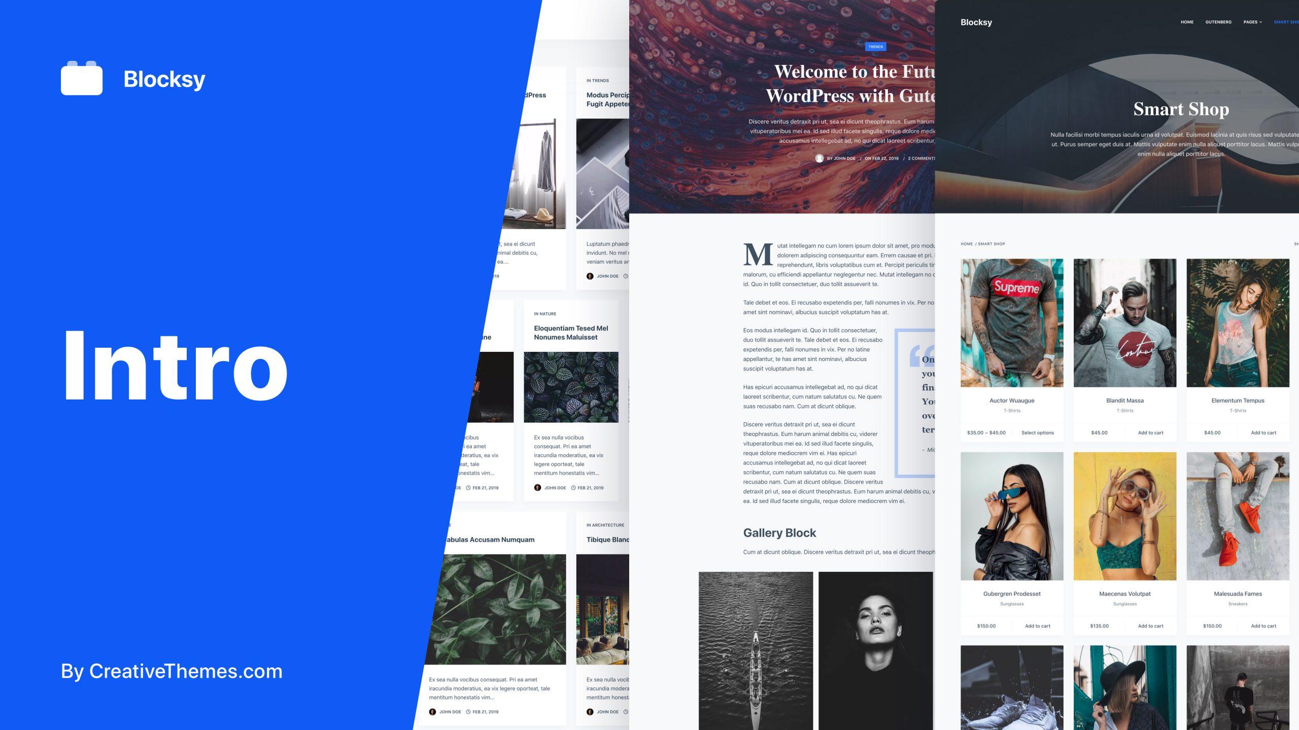 Blocksy Intro